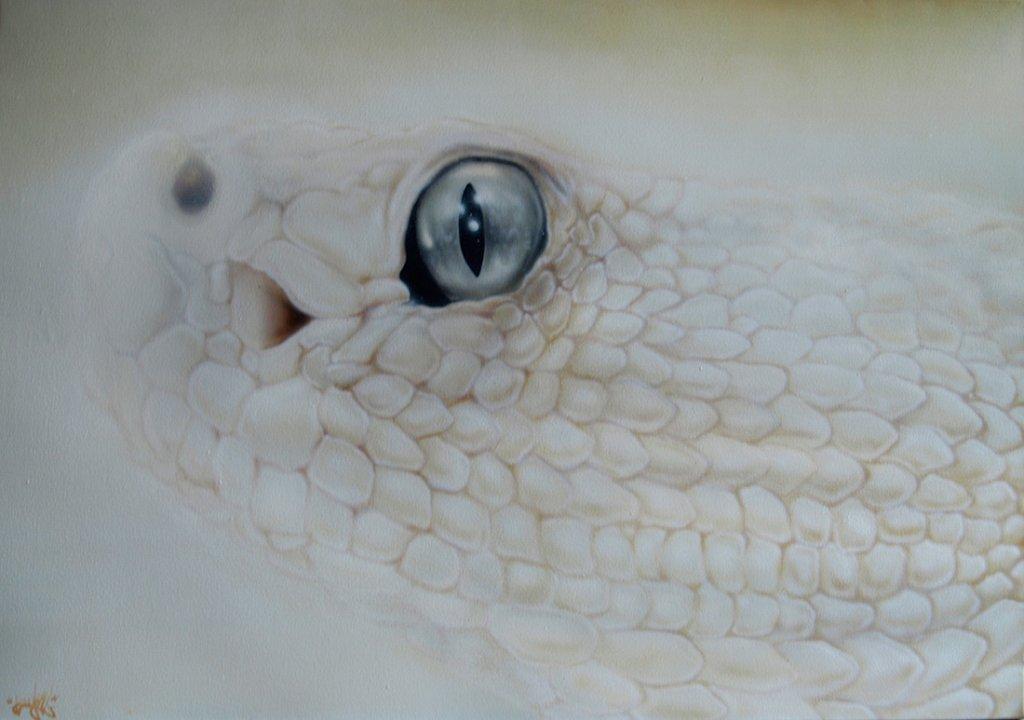 Snake white
